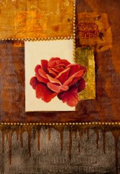 Aunt June's Coral Rose